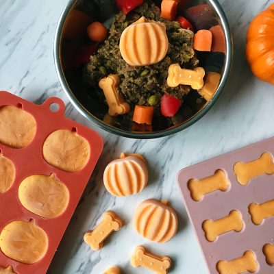 3 Ingredient Pumpkin Dog Treats